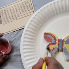 The Butterfly Project In Action