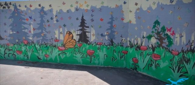 Butterflies Soar in San Diego Schools